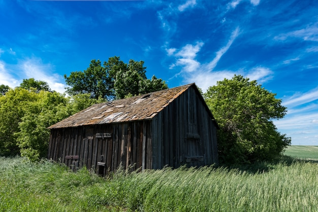 Vieille grange abandonnée dans les hautes herbes avec une éolienne en arrière-plan sous un ciel bleu