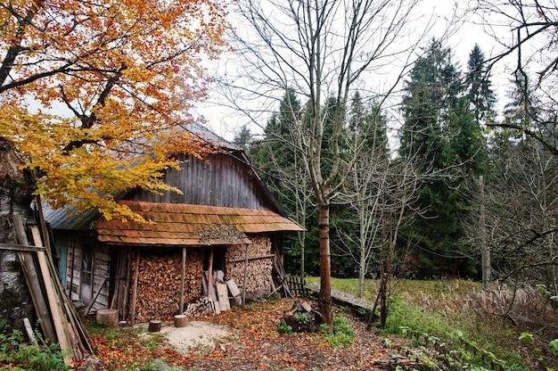 Vieille maison en bois abandonnée sur la forêt en automne.