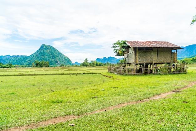 Vieille maison dans les champs à vang vieng