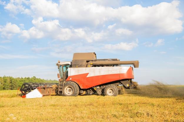 Vieille moissonneuse-batteuse récoltes sur le terrain.