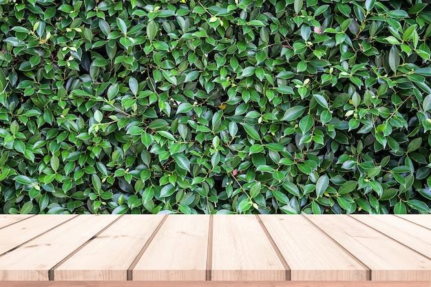 Vieille planche de bois avec fond de feuilles vertes naturelles abstraites pour l'affichage du produit