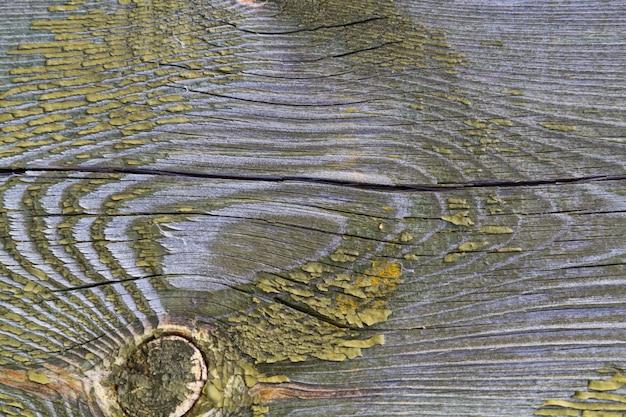Vieille planche de pin texturé avec fissures et noeud