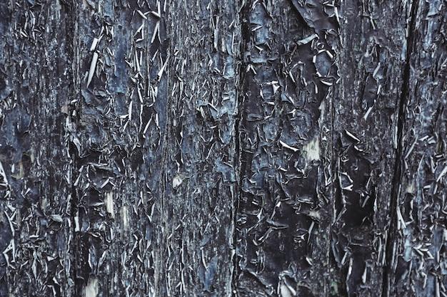 Vieille porte avec des pelures de peinture