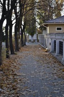 Vieille rue en automne