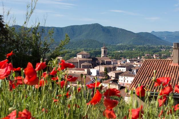 Vieille ville d'olot et montagnes volcaniques avec des fleurs de pavot en premier plan