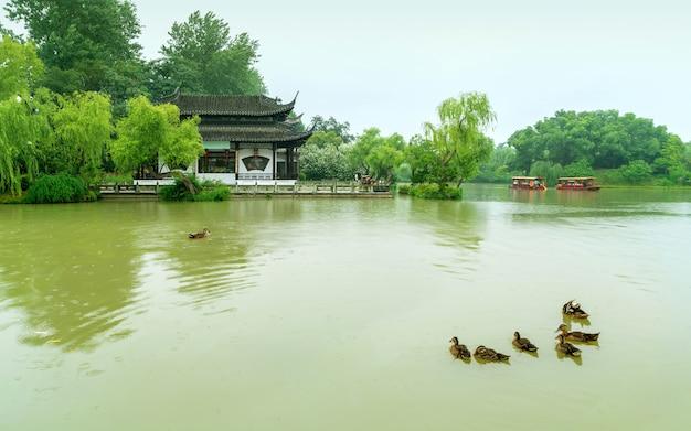 Vieux bâtiments et canards dans le lac