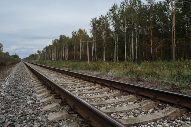 Vieux chemin de fer dans la forêt en automne nuageux