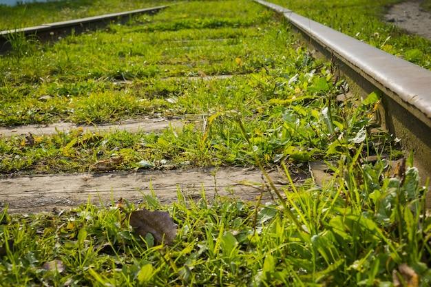 Vieux chemin de fer avec de l'herbe