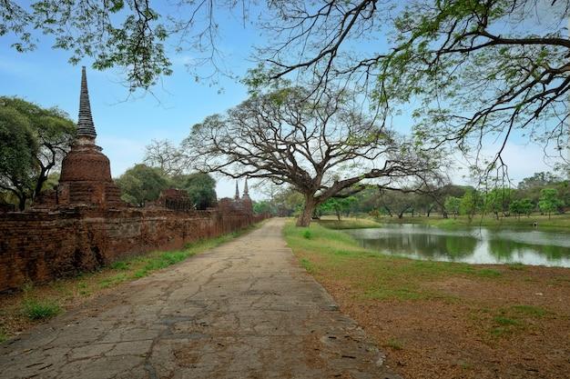Vieux chemin de promenade en ciment entre l'étang et l'ancien temple wat phra si sanphet avec de nombreux arbres