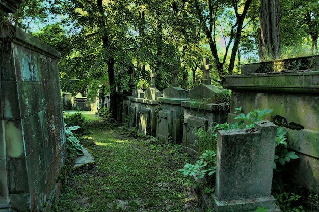 Vieux cimetière