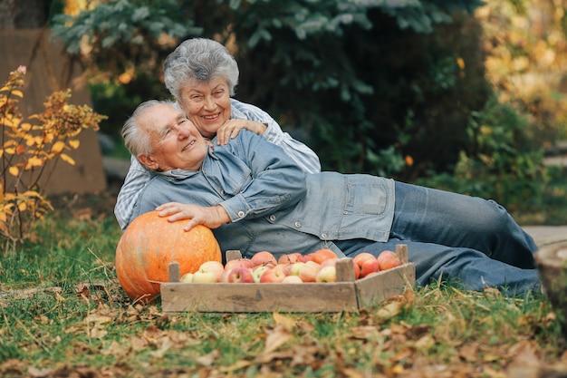 Vieux, couple, sittingin, été, jardin, récolte