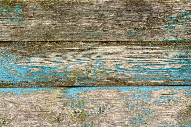 Vieux fond en bois brun bleu avec de la peinture écaillée et du bois naturel de moisissure verte en haut de style grunge...