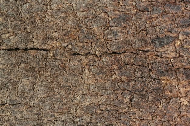 Vieux fond de grain de bois.