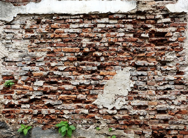 Vieux fond de mur de brique rouge