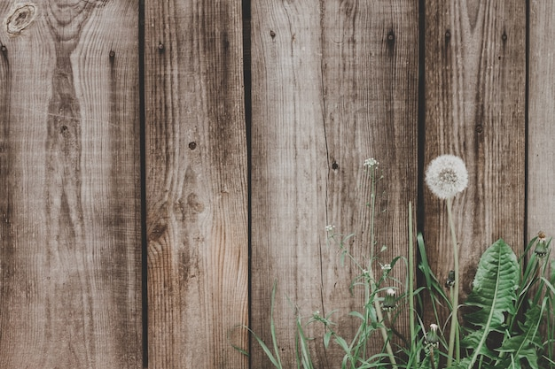 Vieux fond de texture de planches de bois. clôture en bois de fond vintage de planches.