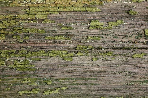 Vieux fond vintage en bois vert. style rustique grunge.