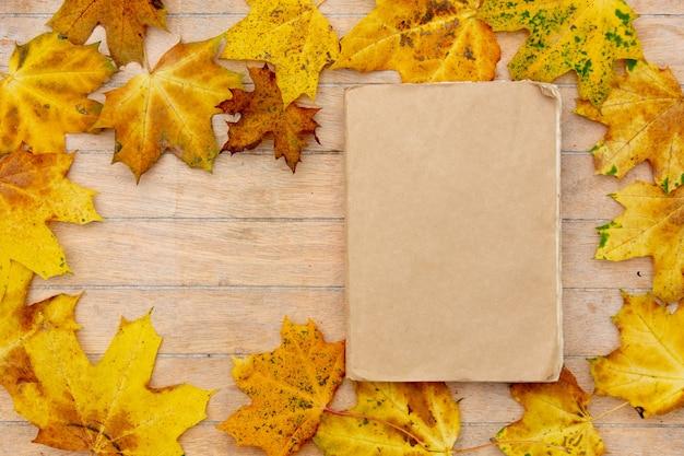 Vieux livre sur une table avec des feuilles d'érable jaune autour.