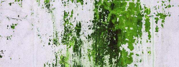 Vieux mur de béton teinté de peinture verte