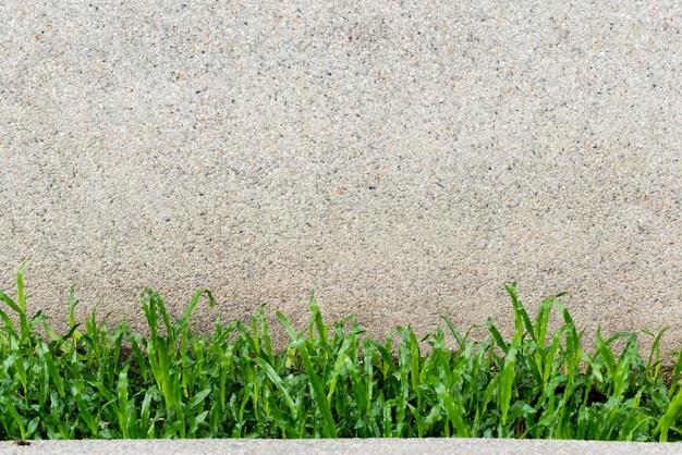 Vieux mur et fond d'herbe verte