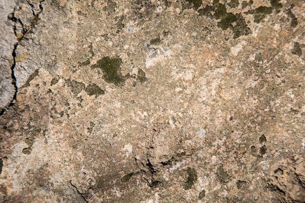 Vieux mur jaunâtre en arrière-plan