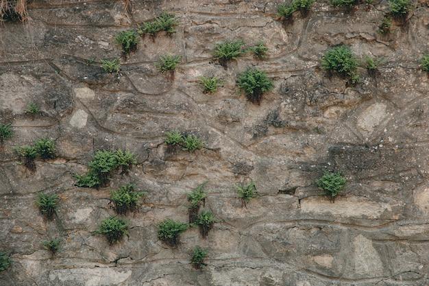 Un vieux mur médiéval en pierre, un fond naturel, une réplique du cosmos.