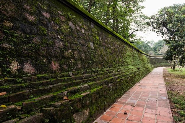 Vieux mur moussu et un chemin