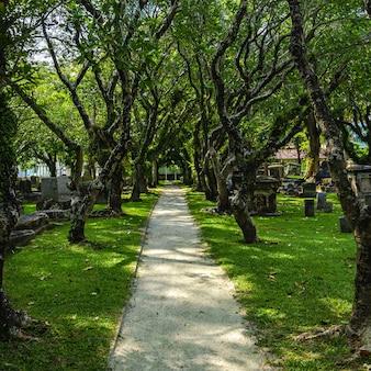 Vieux parc, ancien cimetière chrétien, sous les tropiques, penang
