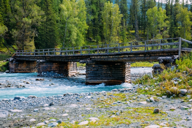 Vieux pont de bois sur la rivière de montagne. montagnes de l'altaï, en russie. journée d'été ensoleillée.