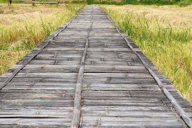 Vieux pont de tissage de bambou sur une rizière