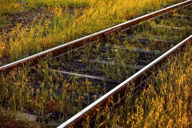 Vieux rails de chemin de fer dans la steppe