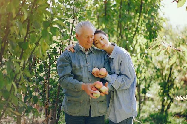 Vieux senior debout dans un jardin d'été avec des pommes