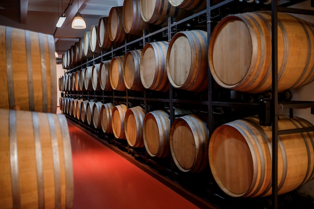Vieux tonneaux en bois traditionnels avec du vin dans une voûte alignés dans une cave fraîche et sombre en italie, porto, portugal, france