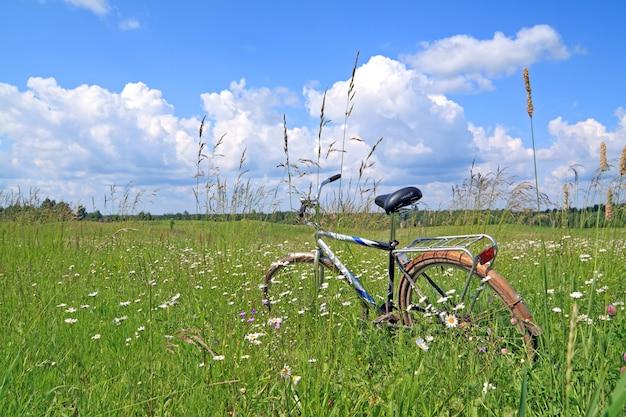 Vieux vélo parmi les herbes vertes