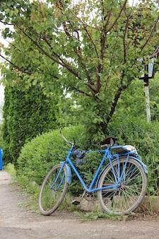Vieux vélo vintage près de l'arbre dans le village
