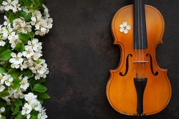 Vieux violon et branches de pommier en fleurs.