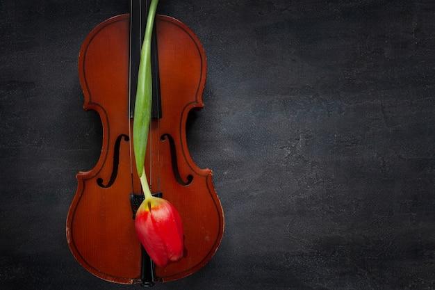 Vieux violon et fleur de tulipe rouge. vue de dessus, gros plan sur fond de béton foncé