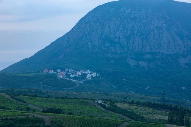 Vignobles dans une vallée de montagne au lever du soleil.