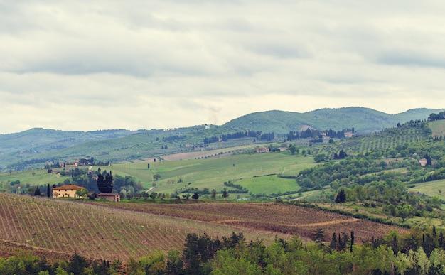 Les vignobles du chianti.