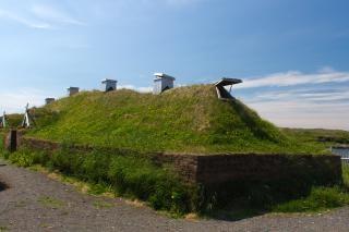 Viking scandinave
