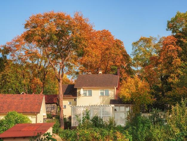 Village de chalets sur une colline d'automne ensoleillée parmi les arbres dorés. l'arrière-pays rural à l'automne. le concept de vie de village heureux.