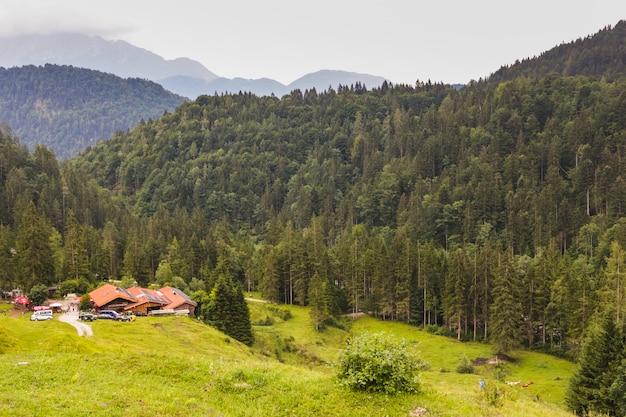 Village dans la vallée verte à côté d'une forêt