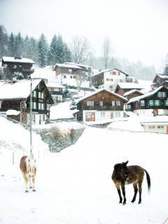 Village enneigé et les chevaux