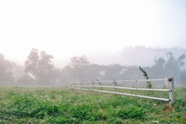 Village entre montagne et brouillard