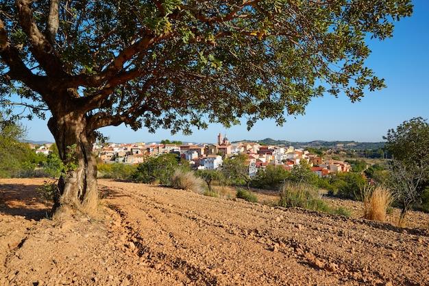 Village de losa del obispo à valence en espagne