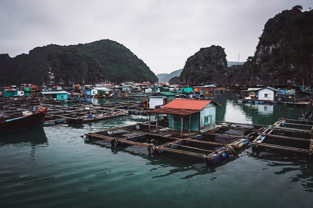 Un village de pêcheurs flottant dans la baie d'ha long, au nord du vietnam