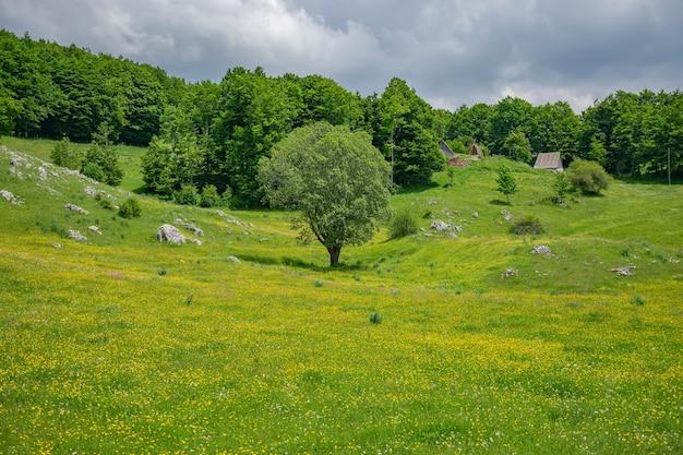 Le village pittoresque est parmi les prairies sur les hautes montagnes.