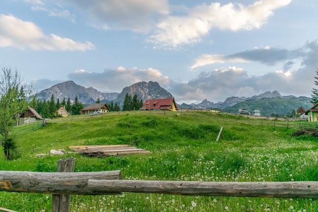 Village pittoresque est situé dans une forêt de montagne de conifères.