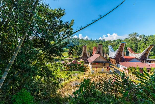 Village traditionnel de toraja dans un paysage idyllique