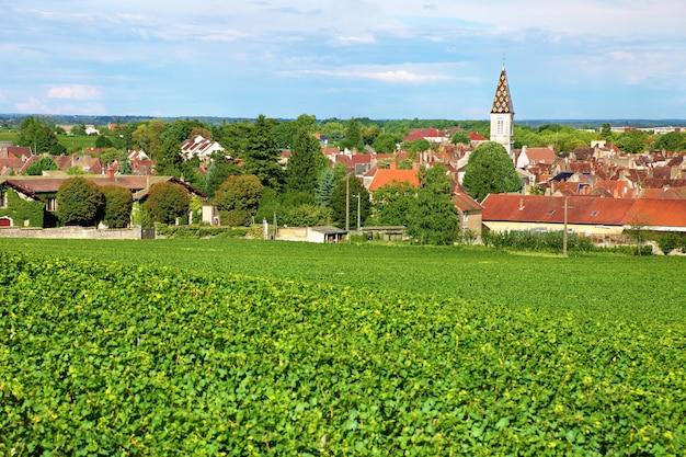 Village viticole français