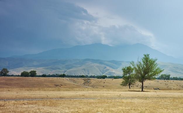 Villages de kirghizie, vue panoramique impressionnante, tien shan, autoroute bichkek - osh, kirghizistan, asie centrale